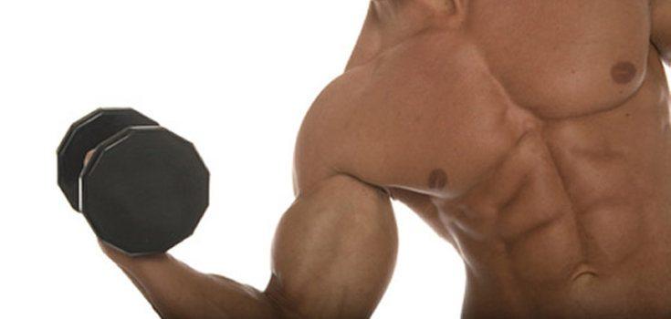 Como ganhar músculos?