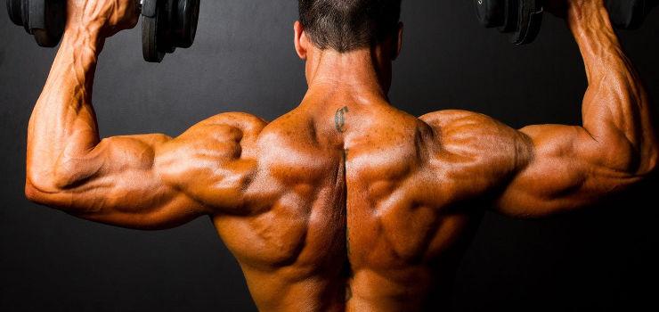 Aumentando força e volume - Saiba mais sobre a Hipertrofia muscular