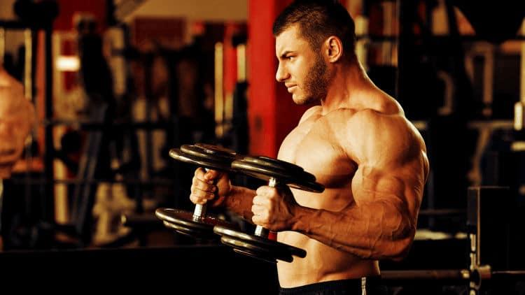 Ganhando peso e perdendo gordura - Entenda o que é bulking e cutting