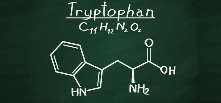 Por que o Triptofano é essencial para você?