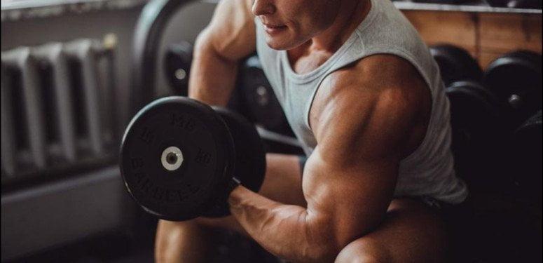 Dieta, rotina de treinos e suplementação para hipertrofia
