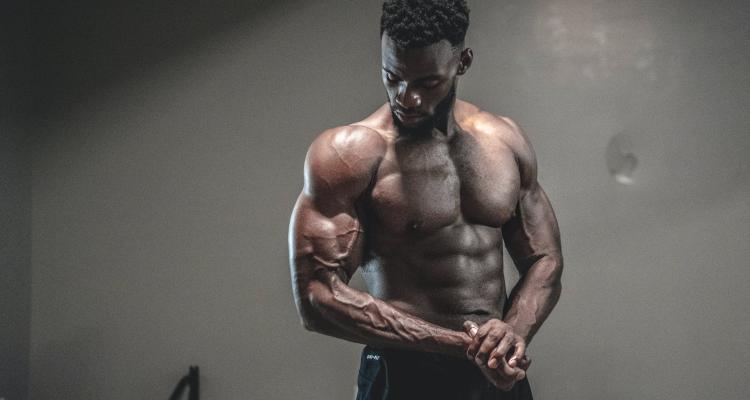 hipertrofia muscular ganhar musculos